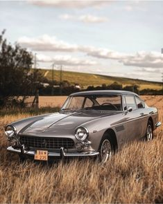 Old Vintage Cars, Vintage Classic Cars, Bmw Classic, Lux Cars, Pretty Cars, Classy Cars, Classic Sports Cars, Futuristic Cars, Maserati