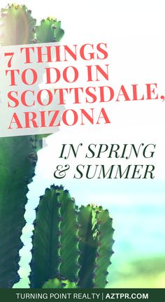 7 Things to do in Scottsdale, Arizona in spring and summer! Fun things to do in Phoenix during the perfect warm weather temperatures! Think spring training games in Scottsdale, outdoor events downtown, golfing, hiking, and more!