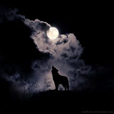 Howl by wyldraven.deviantart.com on @deviantART