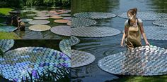 Bruce Munro / Waterlilies Materials —65,000 recycled CDs  —100 6-ft foam lilies  —100 8-ft foam lilies  All materials will be recycled or reused in future installations by Munro.