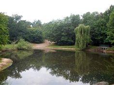 Podkowa Leśna - Leśny Park Miejski. Atrakcje turystyczne Podkowy Leśnej. Ciekawe miejsca Podkowy Leśnej