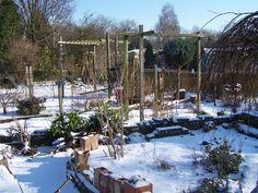 Februari 2012: Sneeuw-4