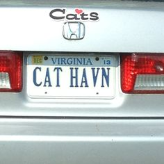 Cat Haven or Cat Heaven? Cat Heaven, Vanity Plate, License Plates, Tags, Car License Plates, Number Plates, Mailing Labels, Licence Plates
