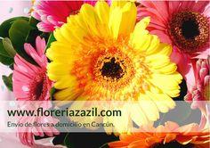 Florería en Cancún | Envío de flores a domicilio en Cancún. Miembros FTD. #floreriascancun #floreriacancun #floreriazazil