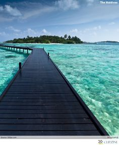 THE MALDIVES : Tropical Paradise