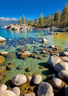 Google+   LAGO TAHOE.NEVADA,USA.