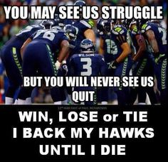Seattle Seahawks Memes added a new photo. Seahawks Football, Seattle Seahawks, Seahawks Memes, Seattle Football, Seahawks Fans, Nfl Football Teams, Best Football Team, Football Memes, Football Stuff