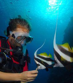 Scuba diving in Vanuatu