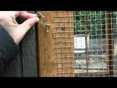 ▶ Raising Chickens CCTV Epi 1 - YouTube