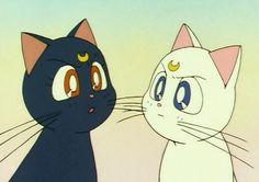 Luna and Artemis Diana Sailor Moon, Sailor Moon Cat, Sailor Moom, Japanese Wallpaper Iphone, Kawaii Wallpaper, Cute Anime Profile Pictures, Cute Anime Pics, Sailor Moon Aesthetic, Aesthetic Anime