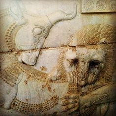 Zoroastrian symbol of Spring and the New Year. A Lion Bites the hind of a Bull.  Nowruz - the day of the spring equinox when the power of the eternally fighting Bull, personifying the Earth, and the Lion, personifying the Sun, are equal. Bas-relief in Persepolis. Iran.