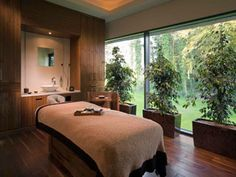 Treatment Acupuncture Indoor plants in my treatment rooms is a must! - Thinking of a Hen Party Spa Weekend for the bride who likes some pampering? We've gathered the ultimate list of the best Irish spas. Luxury Spa Hotels, Massage Therapy Rooms, Spa Treatment Room, Reiki Room, Spa Weekend, Interior Design Portfolios, Clinic Design, Healthcare Design, Spa Design