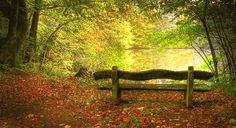 Peaceful Bench Autumn Season Wallpapers