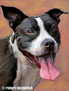 "Pit Bull Puppies ""Medina"" - Pit Bull Mix (artwork by Robert McClintock) Pitbull Mix Puppies, Pitbull Terrier, Pitbull Facts, Bull Painting, American Pit, Dog Paintings, Dog Portraits, Pitbulls, Dog Drawings"