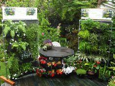 Hanging Gardens Photos green walls, vertical gardens, natural habitats, green air » Hanging Gardens, Vertical Gardens, Green Walls, Green air, NZ, natural habitats