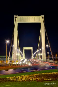 Elisabeth Bridge Budapest Hungary, City Lights, Marina Bay Sands, Roads, Places Ive Been, Beautiful Places, Places To Visit, Memories, World