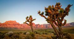 17 paisagens incríveis para inspirar uma viagem para a Califórnia