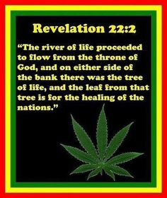 Ganja Mantras & Cannabis History in Religion Weed Facts, Marijuana Facts, Marijuana Funny, Ganja, Bob Marley, Weed Quotes, 420 Quotes, Stoner Quotes, Qoutes