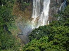Las zonas naturales protegidas más necesarias del mundo http://www.consumer.es/web/es/medio_ambiente/naturaleza/2013/12/09/218817.php