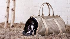 Chic Pet Carrier.