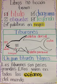 Informative writing for grade--Dual Language Classroom Dual Language Classroom, Bilingual Classroom, Bilingual Education, Spanish Anchor Charts, Writing Anchor Charts, Informational Writing, Informative Writing, Second Grade Bilingual, Third Grade