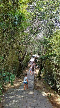 Caminho ao mirante Dona Marta - Rio de Janeiro - Brazil