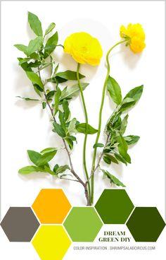 ❤ =^..^= ❤   Color Inspiration Dream Green DIY