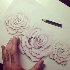 Three soft pink 3D rose drawing would make a beautiful tattoo. from poetry to pornography on imgfave