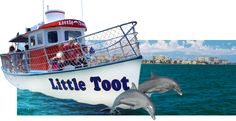 Little Toot Dolphin Sighting Boat Tour in Clearwater Florida.   The Little Toot is the only Dolphin boat that can go into the shallows as well as the Gulf to ensure more Dolphin sightings and closer Dolphin contact. GUARANTEED to see dolphins or your next trip is FREE!