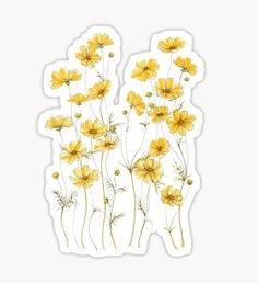"""Yellow Cosmos Flowers"" Stickers by JRoseDesign Homemade Stickers, Diy Stickers, Laptop Stickers, Journal Stickers, Planner Stickers, Sticker Printable, Tumblr Sticker, Stickers Kawaii, Cosmos Flowers"