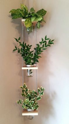 Hanging Mason Jar Planter 3 tier by BloomArtistry on Etsy, $38.00