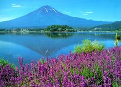 Google Image Result for http://www.elephantjournal.com/wp-content/uploads/2010/05/Mt-Fuji3.jpg