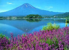Mount Fuji #Japan in summertime!