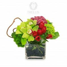 "Modern design is exemplified in this show stopper of an arrangement! Glossy black river stones provide the foundation for a vase over flowing with leaves, Green Trick, baby green hydrangea and billowing red hydrangea punchy red tulips and Green Cybidium Orchids provide the focal point and ""wow"" factor! The Modernist you know will love this one!"