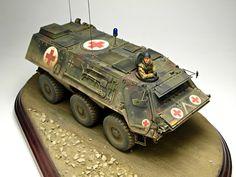 TPz1A6 Fuchs 1/35 Scale Model