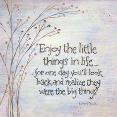 °° apreciar as pequenas coisas da vida ... por um dia você vai olhar para trás e perceber que eram as grandes coisas °°