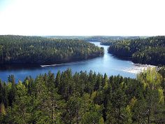 A lovely hiking area. Eagle Wings, Outdoor Life, Some Pictures, Finland, National Parks, Survival, Hiking, Earth, Photo And Video