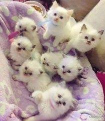 Cutest bundle ever:):):)