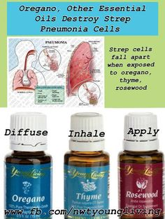 Young Living Rosewood Oregano Thyme Essential Oils destroy Strep and Pneumonia    Anybody interested in purchasing the oils or products or learning more about Young Living can email me at siegel_m@bellsouth.net. I would be more than happy to help!  Main website www.youngliving.com Or check out the products and order at   https://www.youngliving.com/signup/?site=US=1483454=1483454