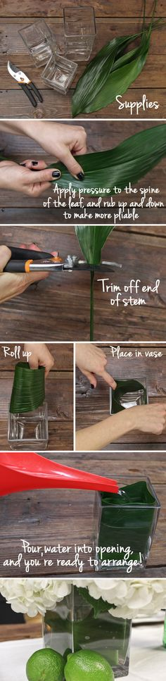 An easy way to streamline your arrangements! Wrap the inside of the vase with a large leaf--like Aspidistra. Check out the full breakdown!