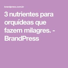 3 nutrientes para orquídeas que fazem milagres. - BrandPress
