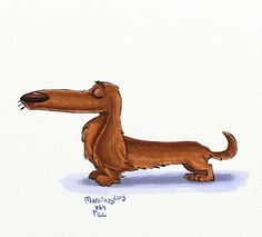 Long Haired Dachshund by Martinus van Tee