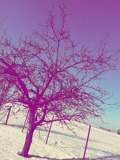 ♡♥♡ winter ♡♥♡