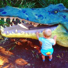 Up close & personal with Mr. Croc @currumbinsanctuary ..... #currumbinwildlifesanctuary #moremates #jasper&croc #playtime  by zoe_boe_mitchell http://ift.tt/1X9mXhV