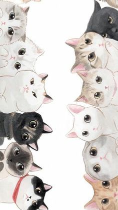 Phone wallpaper: the crazy cat lady collection cute cat wallpaper, iphone wallpaper kawaii, Iphone Wallpaper Kawaii, Cat Phone Wallpaper, Cute Cat Wallpaper, Geo Wallpaper, Wallpaper Maker, Wallpaper Fofo, Black Wallpaper, Nature Wallpaper, Marvel Wallpaper