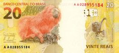 """Brazilian Currency: Brazilian Real or """"Real Brasileiro"""" (in Portuguese): Brazilian Currencies leading up to the present. Brazilian Real, Paper, Brazil, Seals, Money, Coins, Animales"""