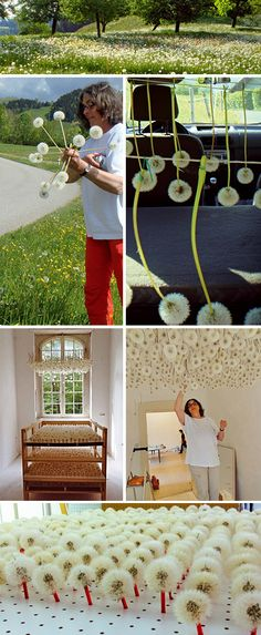 1 of 2 Stunningly delicate Dandelion installation by Swiss artist Regine Ramseier.