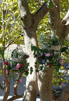 Gaiolas Plants, Birdcages, Event Decor, Wedding Decoration, Events, Plant, Planets