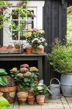 28 Trendy backyard garden shed potting tables Garden Cottage, Garden Pots, Home And Garden, Potted Garden, Spring Garden, Potted Plants, Patio Plants, Potted Flowers, Garden Table