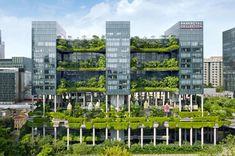 Parkroyal em Cingapura, dobra a área verde do local - SustentArqui